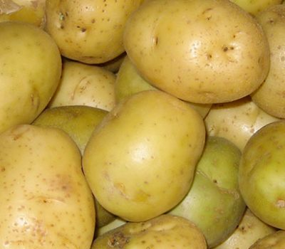 New market access for Alberta seed potatoes to Thailand