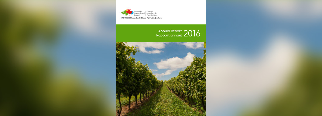 Cover graphic for 2016 Annual Report