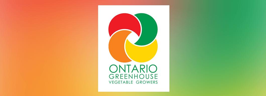OGVG Banner