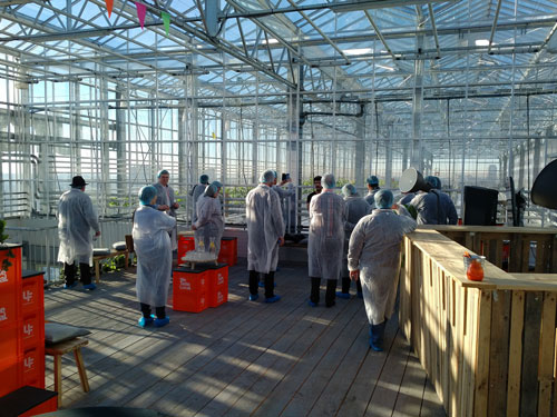 Delegates observing the Urban Farm facility in Rotterdam, the Netherlands. Photo: R. Lee