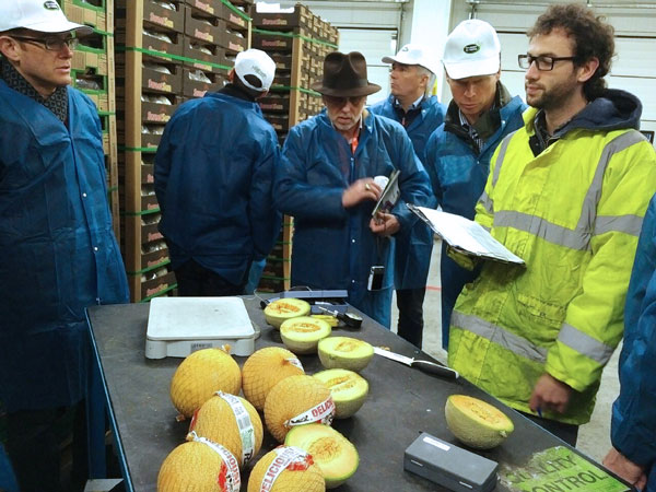 Food inspection at Hillfresh International Quality Control facility, Rotterdam, the Netherlands. Photo: R. Lee
