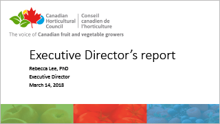 CHC - Executive Directors report