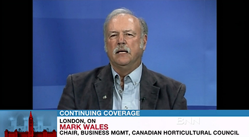 Mark Wales on BNN