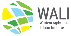 Western Agriculture Labour Initiative