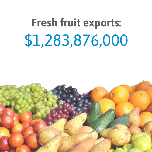 fruit exports